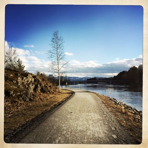 This springy feeling Spring Kongsberg Norway River Riverside River View Trees Tree