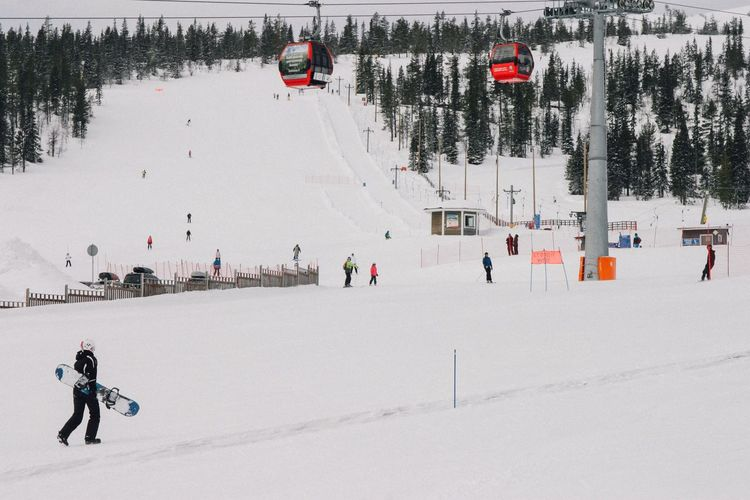 Ylläs ski center. Yllasjarvi Skiing Springtime Snow Gondola Lift Lapland Finland Winter Cold Temperature Winter Sport Nature Day Leisure Activity Outdoors Lifestyles Weather Large Group Of People Men Real People Tree Skiing Ski Lift Mixed Age Range Frozen Sport Extreme Sports