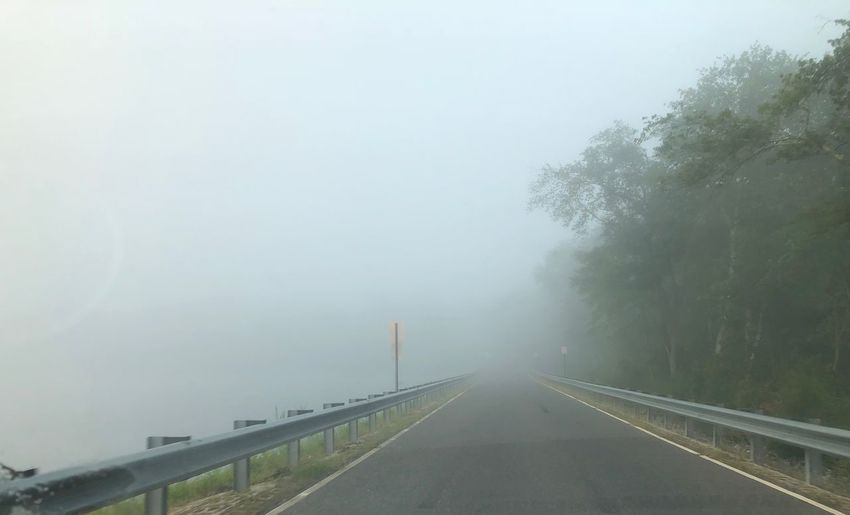 Morning Ride Fog Transportation The Way Forward Nature Road Day Plant Tree Sky Railing Direction Outdoors Sign Barrier Beauty In Nature No People Car Motor Vehicle Diminishing Perspective Cold Temperature