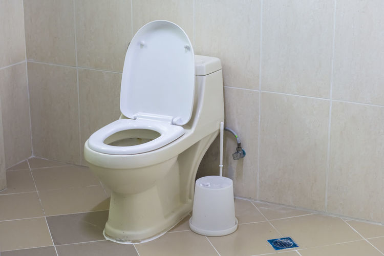 Toilet bowlo Bathroom Tile Domestic Bathroom Hygiene Toilet Flooring Indoors  Home Toilet Bowl Tiled Floor Domestic Room Wall - Building Feature No People White Color Convenience Urgency Home Interior Toilet Paper Absence Close-up Clean
