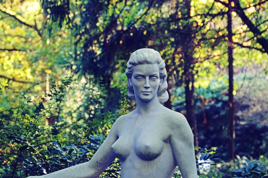 Beauty Statue Nature Forest Outdoors Close-up Sculpture Beautiful Art Stone Art Female Statue Beautiful Arts Arts Culture And Entertainment A Closer Look Statue Sculptures Into The Woods In Memory Of Fragility Made Of Stone Beautiful Woman Female Beauty