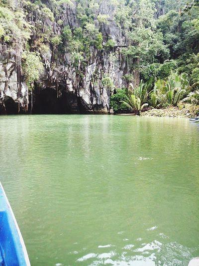 on our way to Puerto Princesa Subterranean River Puerto Princesa City Palawan Philippines The Traveler - 2015 EyeEm Awards Cave Taking Photos Enjoying Life EyeEm Nature Lover Moments Trees River OpenEdit