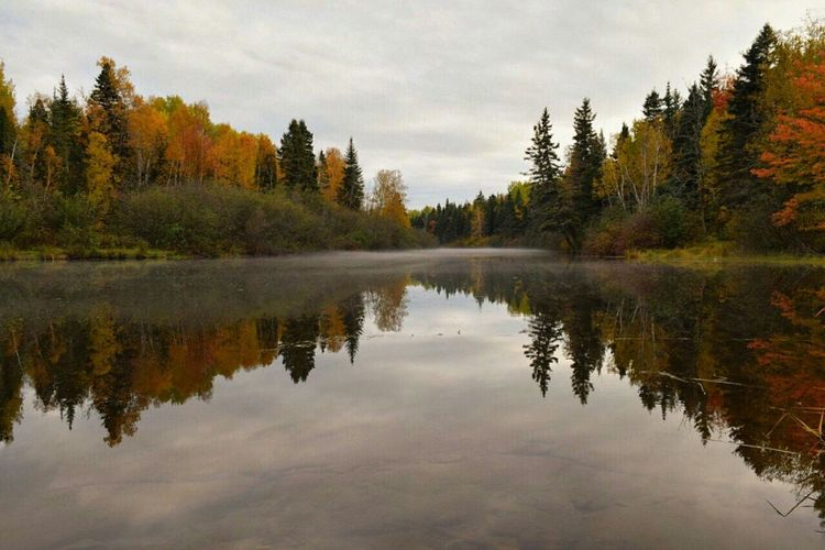 Capture The Moment River Reflection Autumn Colors Nature Photography Canadian Autumn
