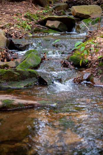 Surface level of stream flowing through rocks
