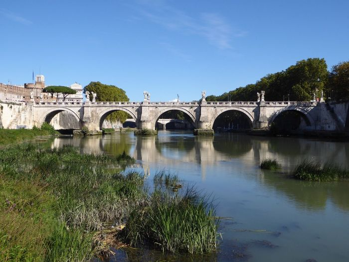 Rome Italy Built Structure Architecture Roma Reflection_collection Reflections Bridge Beautiful Low Angle View Bridges Arch Tree Water Transportation Day River Travel Destinations Outdoors Nature Growth No People Scenics Sky