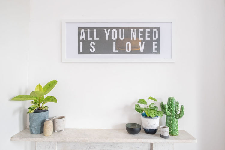 Text on potted plant against wall at home