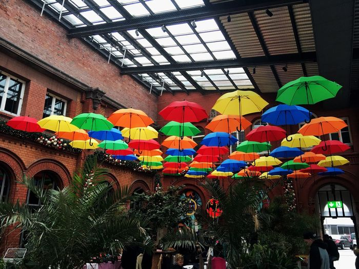 Multi colored umbrellas hanging on wall