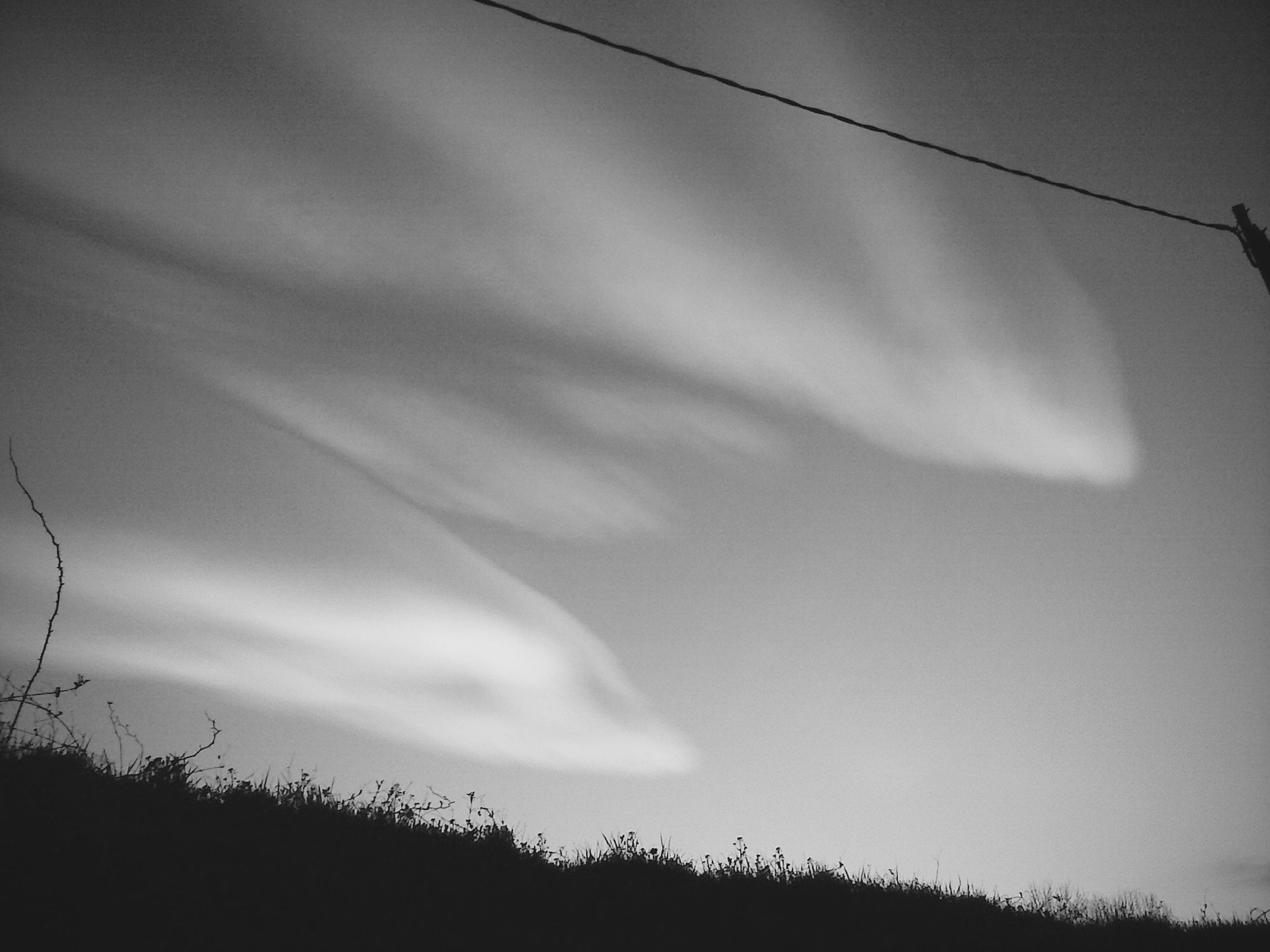 sky, tranquility, silhouette, nature, tranquil scene, plant, beauty in nature, growth, cloud - sky, low angle view, scenics, field, dusk, cloud, landscape, outdoors, no people, cloudy, sunset, tree
