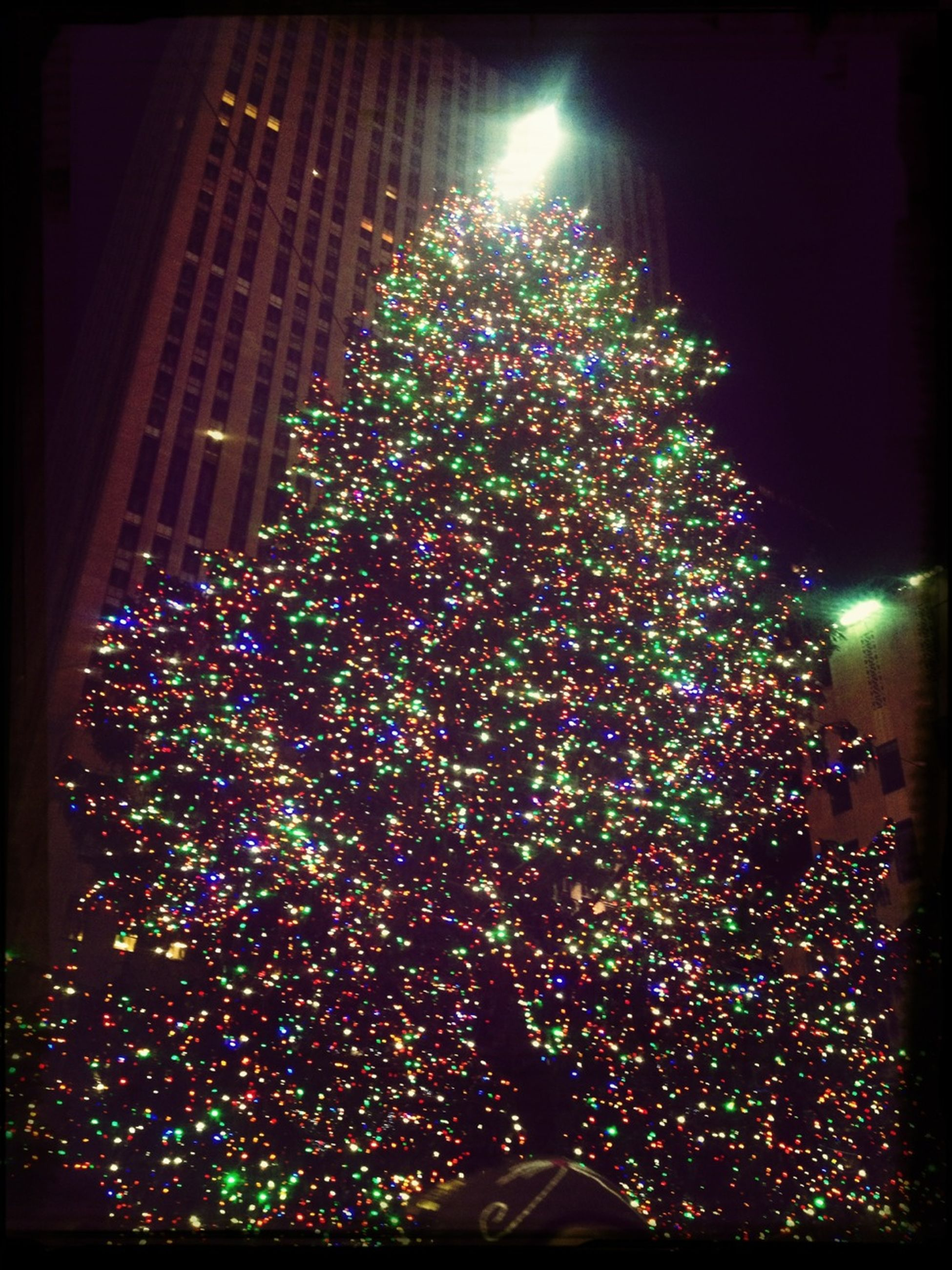 illuminated, night, celebration, christmas, christmas tree, christmas decoration, decoration, lighting equipment, christmas lights, building exterior, low angle view, architecture, built structure, tradition, decor, glowing, multi colored, tree, light - natural phenomenon, firework - man made object