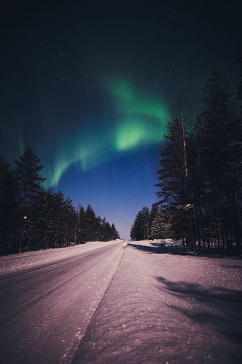 Road to north Road Sky Night Tree Direction Beauty In Nature Snow The Way Forward Nature No People Winter Space Cold Temperature Tranquility Green Color Diminishing Perspective Astronomy Aurora Polaris Northern Lights Landscape Winter Scenics Travel Photography Check This Out