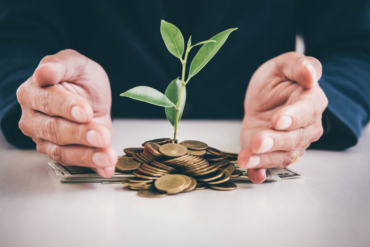 Midsection of businessman with sapling amidst coins at table