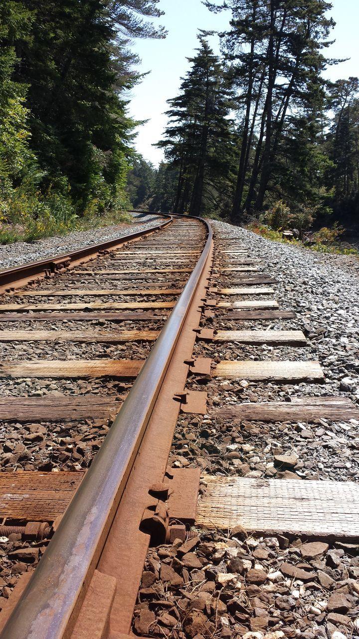 railroad track, rail transportation, transportation, tree, railroad tie, metal, railway track, no people, nature, day, the way forward, scenics, landscape, outdoors, public transportation, beauty in nature, sky
