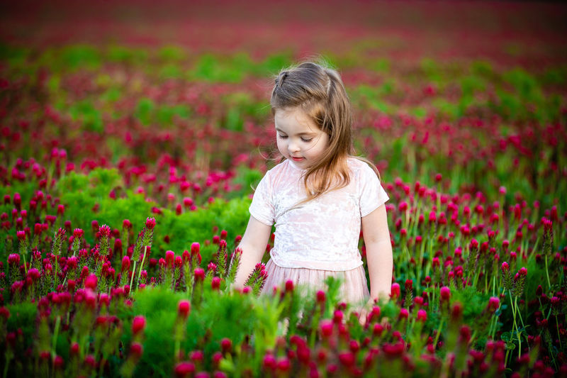Girl with pink flowers on field