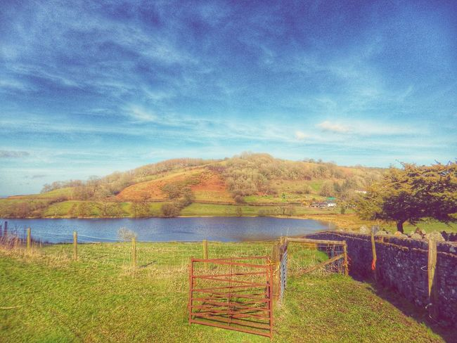 Wales Enjoying The Sun Walking Around Escaping Relaxing Camping Soaking Up The Sun Countryside Landscape Taking Photos Photography Check This Out Landscape_photography Bucolic Landscape Bucolic Rural Scene Rural Textures And Surfaces