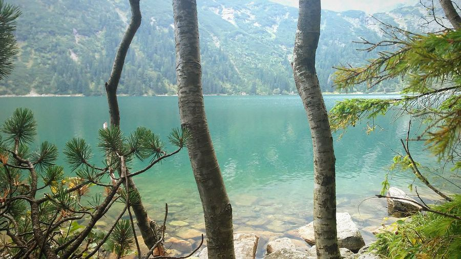 Beautiful Lake  Lake View Moutains High Up Sea Colors  Blue Water Rocks And Water Trees And Nature Sunny Day
