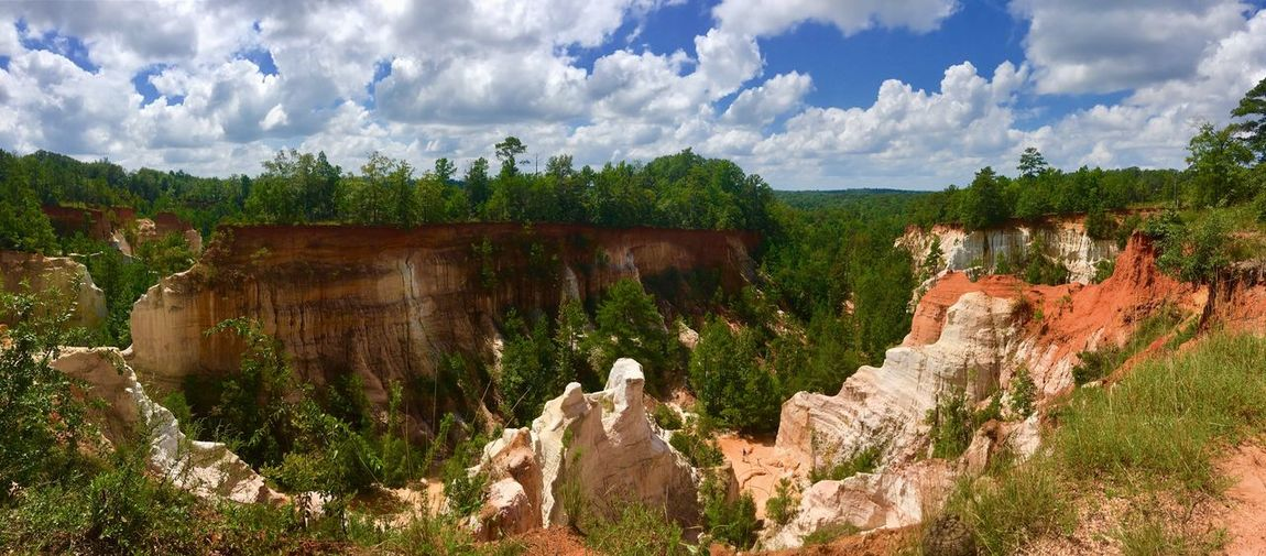 Little Grand Canyon of Georgia Red Rocks  Canyon Decay Erosion Little Grand Canyon Georgia Georgia Nature Cloud - Sky Sky Plant Nature Tree Day Architecture No People Sunlight Outdoors Growth Beauty In Nature Panoramic