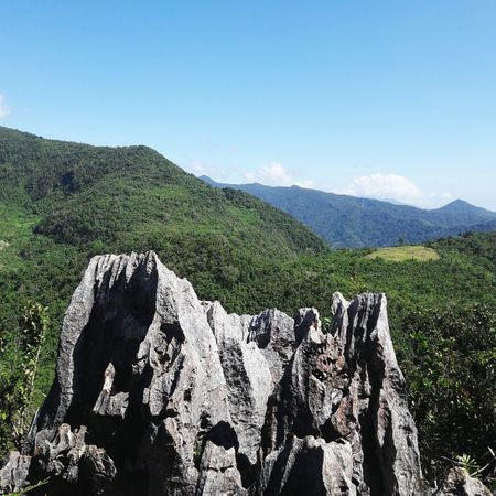 Mountain Nature Beauty In Nature No People Outdoors Day Scenics Mountain Range Landscape Sky Tree Tea Crop Animal Themes Philippines Ph Rizal Daraitan Mount Tree