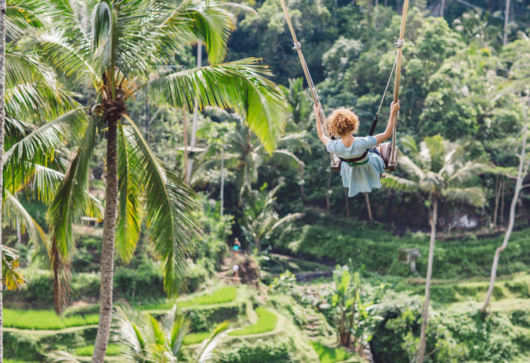 Rear view of girl swinging between palm trees