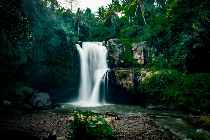 The Hidden Waterfall BestEyeemShots Besteyeemtravel Besteyemphotos EyeEm Nature Lover Flowing Water Forest Long Exposure Photooftheday Waterfall