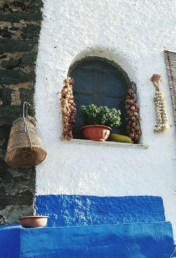 Windows Colours Pantelleria EyeEm Happyholidays Sicilia
