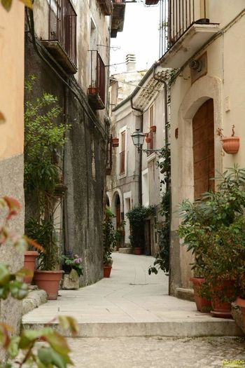 Traditional Pacentro Photo Italy Pacentro Borghipiúbelliditalia Village View Abruzzo - Italy Italy Famous Place Architecture Built Structure History Tradition Tranquil Scene Idyllic Landscape Landscapes With WhiteWall Cultures Spirituality