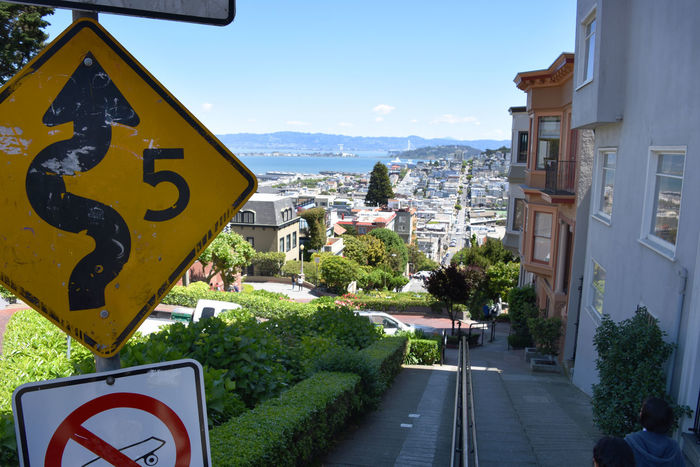 Signs at the top of Lombard Street - looking out to San Francisco Bay City Footpath Lombard Street Residential  San Francisco Sign Windy Road Architecture Building Exterior Built Structure Citycapes Day Green In The City No Skateboarding Pavement Residential District Road Road Sign San Francisco Bay Steep Street Sign View Over The City