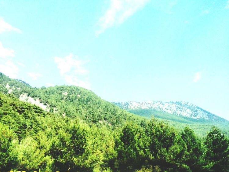 Dağlardağlar Taking Photos Dogadan Yeşil Eyeemphotography Enjoying Life Yeşilinengüzeltonu Bulutlar Gökyüzümavi Gunesligunler Doğayıseviyorumm Güneşyakıyor Renklerinsenfonisi Güneş♡♥♡ 05082016