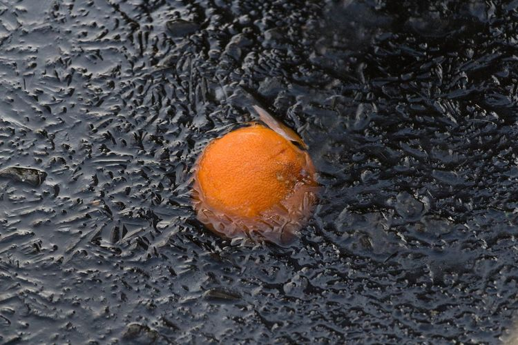 Orange floating in Amsterdam freezing canals Freezing Canals Amsterdam Winter Ice Orange Full Frame No People Backgrounds Nature Close-up Water Beauty In Nature Outdoors Day