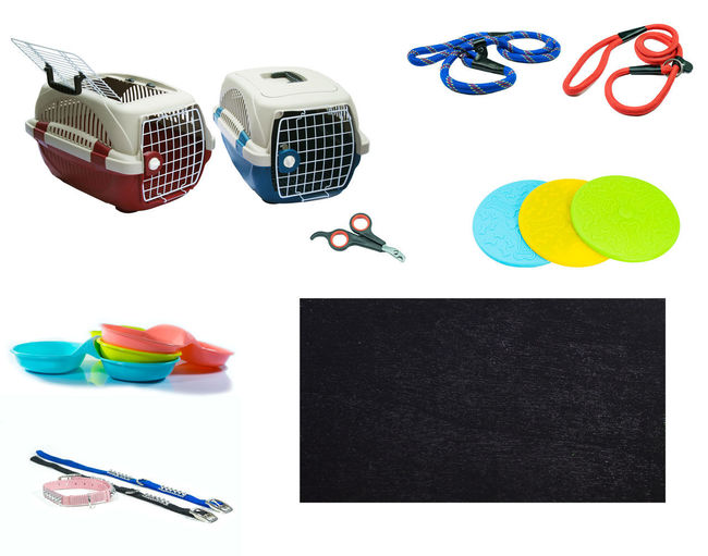 Pet accessories on isolated white background. Pet carriers, Leashes, Rubber toy, Collars, Bowls, Nail scissors and Blackboard for text Dogs Travel Accessories Ball Bowl Choice Copy Space Cut Out Equipment Group Of Objects High Angle View Indoors  Large Group Of Objects Leashes Multi Colored Nail Scissors No People Office Supply Pet Supplies Rubber Toys Stapler Still Life Studio Shot White Background