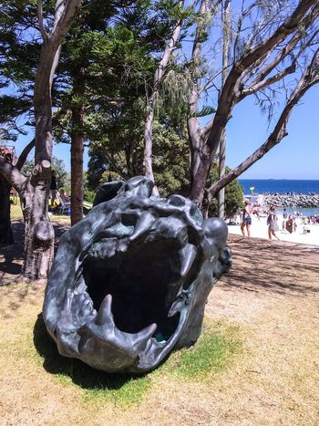 Sculpture on Cottesloe Beach Foreshore Animal Creature Scary Teeth Mouth Open Artistic Expression Culture Sculpture Tourists Arts Festivals Art ArtWork Western Australia Cottesloe Beach Sculptures By The Sea March 12,2016 Tourist Attraction  Modern Art Three-dimensional Arts And Entertainment Animal Head  Animal Sculpture Dark Art