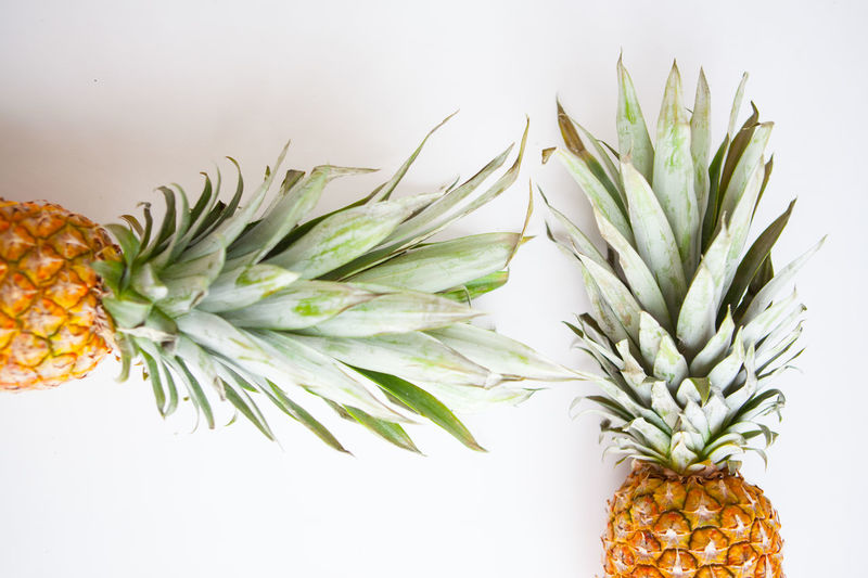Fresh fruit, two pineapples against a white background top view Pineapple Healthy Eating Food Food And Drink Fruit Wellbeing Tropical Fruit Still Life White Background Indoors  Freshness No People Studio Shot Green Color Close-up Plant Nature Decoration White Color Leaf Orange