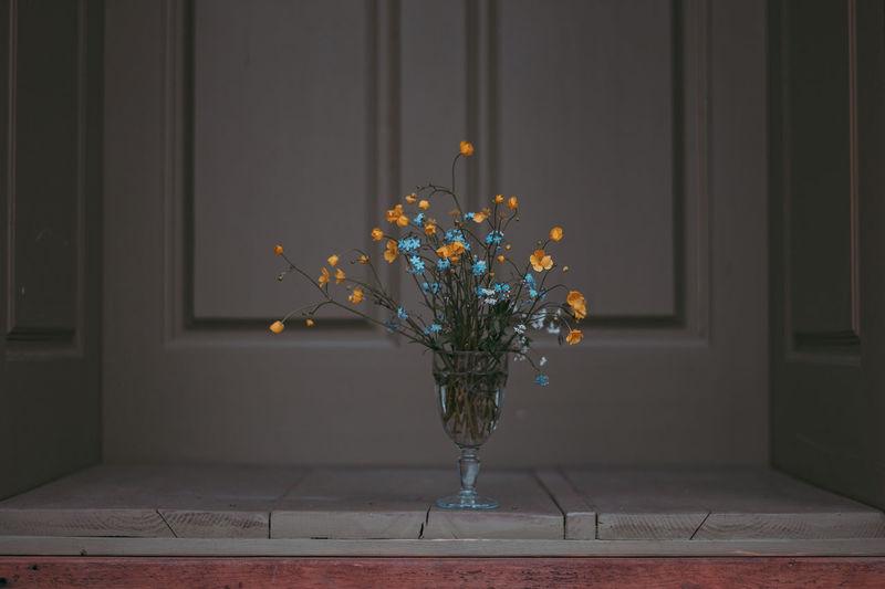 Flowering plant in vase at home