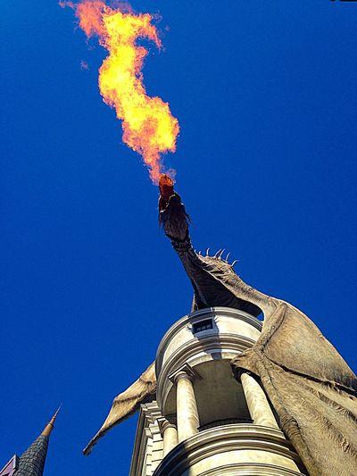 The dragon has escaped Gringotts!!! Harry Potter Dragon Gringotts Dragon Universal Studios