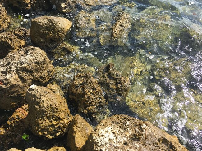 Water No People High Angle View Outdoors Shallow Close-up Nature Day Underwater Clear