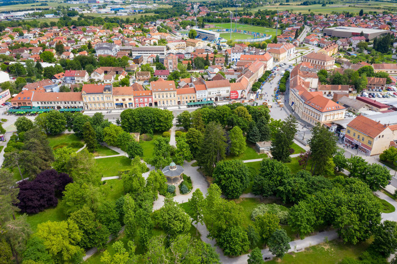 High angle view of trees and buildings in town