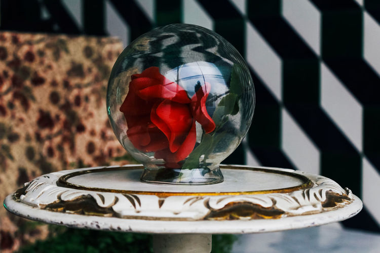 Close-up of red flowers in glass container on table