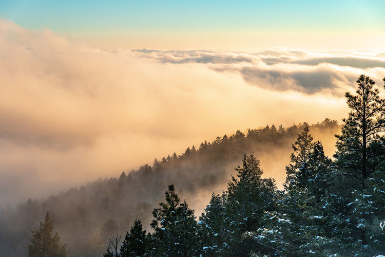 Colorado Boulder Boulder Colorado Rocky Mountains Sky Beauty In Nature Scenics - Nature Tranquil Scene Tranquility Nature Tree Plant Fog Growth No People Cloud - Sky Forest Mountain Non-urban Scene Idyllic Environment Land Morning Outdoors Coniferous Tree