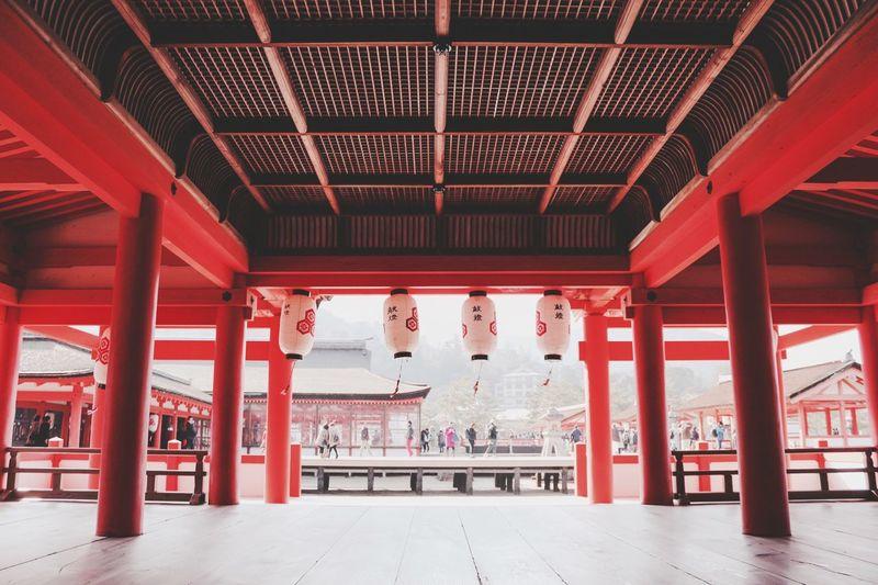 Postcard Japan Travel Photography Architecture Japanese Temple Temple Symmetry Jinja Travel Place Of Worship