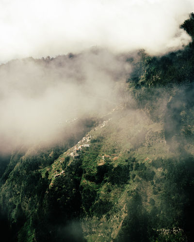 life on the edge Check This Out Copy Space EyeEm Best Shots EyeEm Nature Lover Madeira Madeira Island Natural Beauty Beauty In Nature Cloud - Sky Clouds And Sky Environment Fog Foggy Morning Island Islandlife Land Landscape Mountain Nature Nature_collection Outdoors Scenics - Nature Tranquility