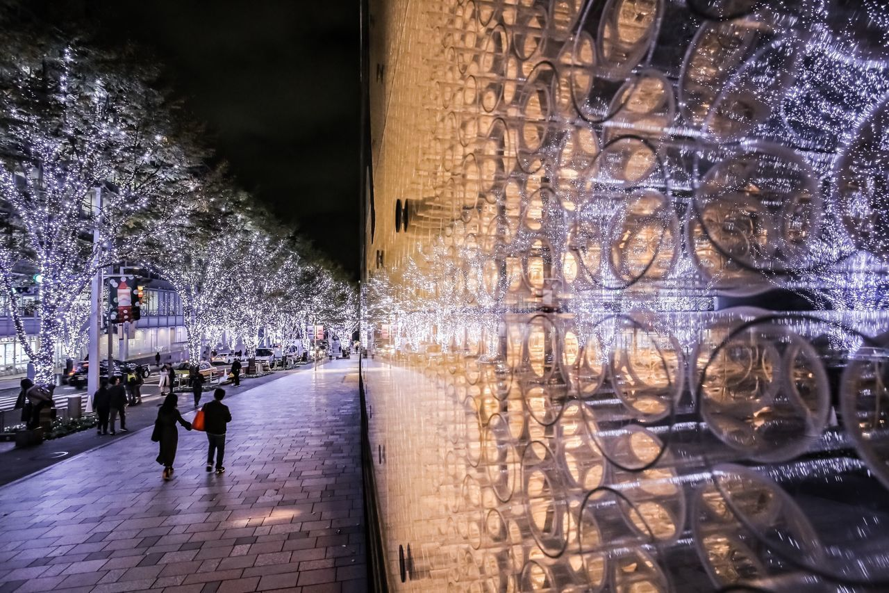 group of people, architecture, real people, built structure, tree, building exterior, women, building, reflection, incidental people, plant, lifestyles, illuminated, city, leisure activity, nature, night, water, men, walking, outdoors