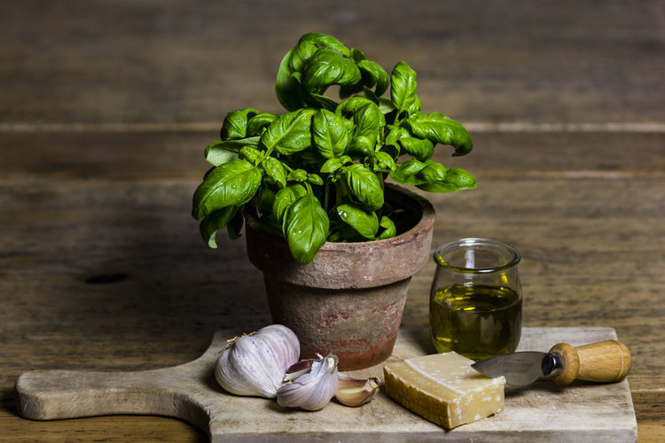 Potted plant and food on cutting board at table