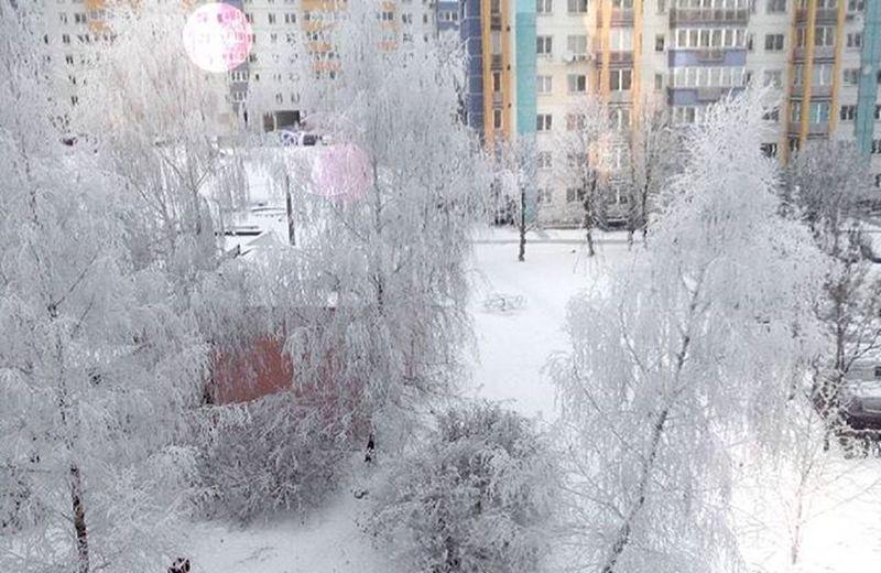 На улице настоящая сказка❄🌌🌠 Как жаль, что из-за подготовки к экзамену, невозможно выйти на улицу и насладиться сказкой, подаренной нам зимой. Zima снег сказка наулице Krasota настоящая экзамен