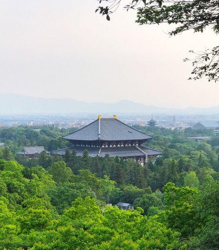 Building Exterior Todaiji temple Nara Japan ,iPhone7plus