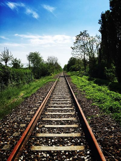 Railroad Covered by Nature Tree Parallel Railroad Track Rail Transportation Sky Railroad Tie Railway Track Empty Road Track Railroad Tramway Diminishing Perspective EyeEmNewHere