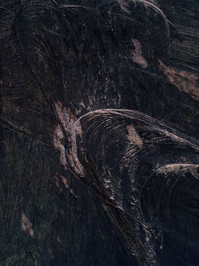 Textured  Nature Pattern Textured Effect Backgrounds Tree Full Frame Close-up No People Outdoors Day