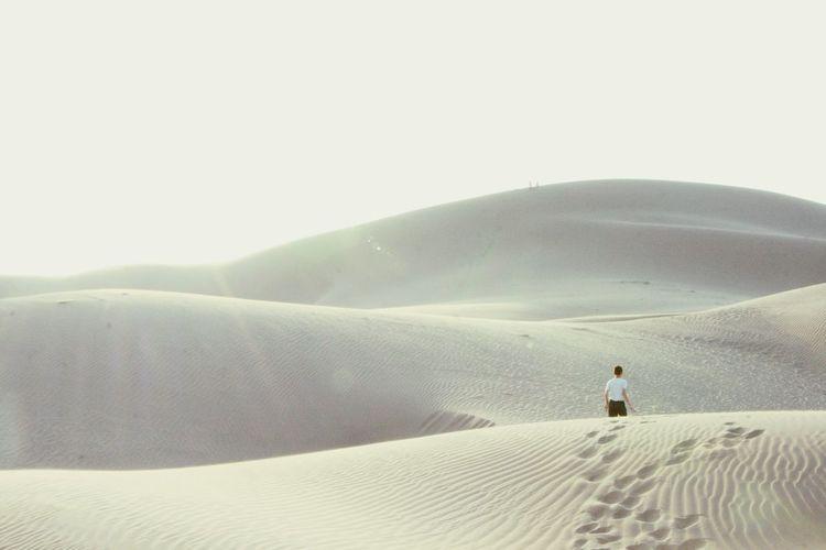 Rear view of man on sand dune in desert against sky