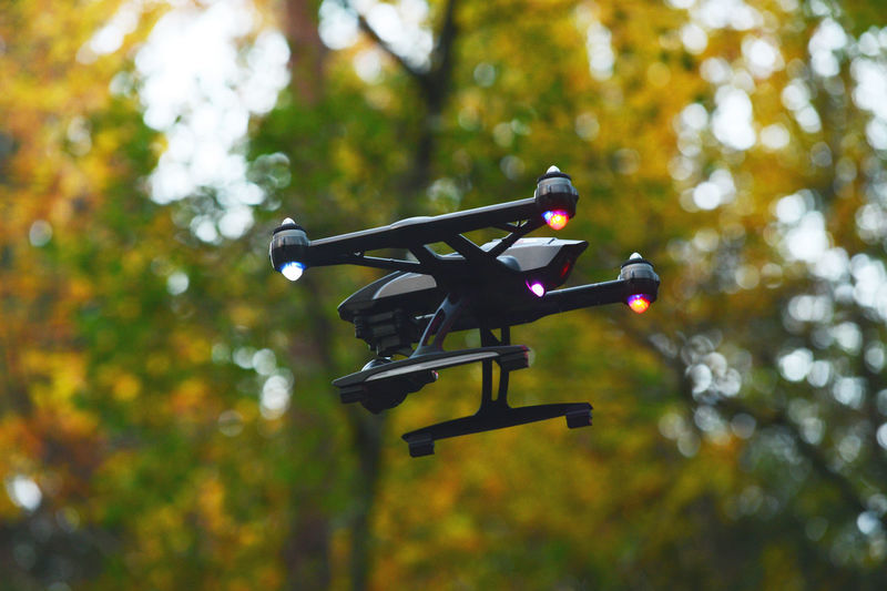 Low Angle View Of Drone Against Tree