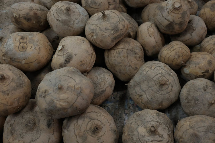 Close up shot of Asian water chesnut Chesnut Chessnut Close-up Food Food And Drink For Sale Market No People Raw Food Retail  Vegetable Water Chestnut