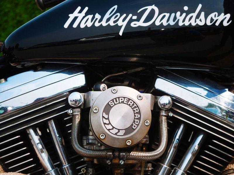 iron horse Carburetor Motorcycle Motorcycles Harley Davidson Harleydavidson Cylinder Engine Metallic Shining Tank Barrel Logo Famous Motorbike Motorbikes Steel Brand American American American Culture USA