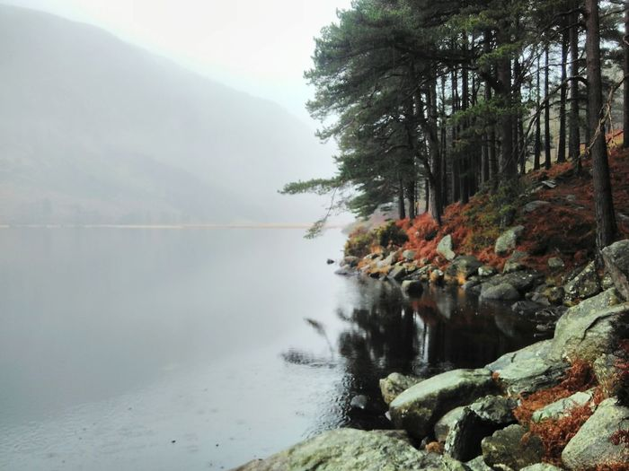 Shades Of Winter Lake Glendalough Wicklow Nature Tree Fog Water Lake Scenics Mountain Beauty In Nature Landscape Forest Outdoors Tranquility No People